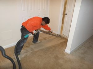 A Technician Conducting Carpet Drying Services